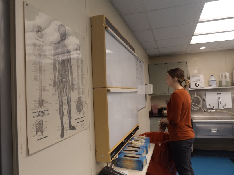 Criminal justice major Ayla Taylor stops to read the schedule on the board in the inspection room at the Vanderburgh County Coroner's office. Ayla has been interning at the coroner's office since the beginning of the semester.
