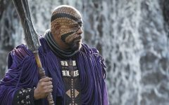 'Black Panther' exceptional