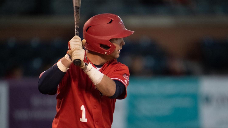 Jacob Fleming up to bat against the University of Indianapolis.